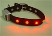 LED intermitente collar del perro